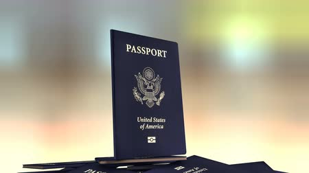 passaporti : Artist rendering United States of America travel passport.