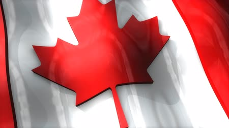 democrático : 3D flag, Canada, waving, ripple, North America. Stock Footage