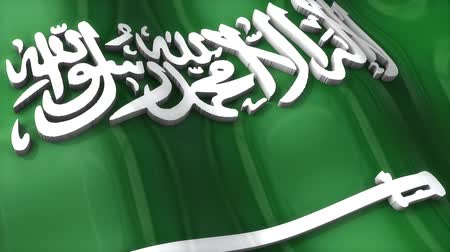 monarchy : 3D flag, Saudi Arabia, waving, ripple, Africa, Middle East. Stock Footage