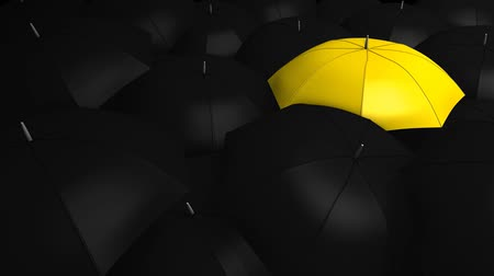 metaphors : Conceptual animation, Crowd with umbrella with 1 unique color.
