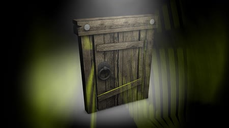 doorway : Old Mysterious door, wood, gate, shine. Stock Footage