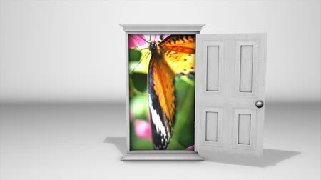 редактировать : Conceptual animation, white door with butterfly inside, green screen included. Стоковые видеозаписи