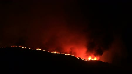 fiamma : Fiamme giganti in incendi boschivi in ??California durante la notte