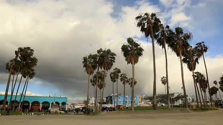 skate : Venice Beach low angle of incoming storm