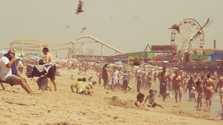 Slow motion shot of seagulls and beach goers in front of the iconic Santa Monica Pier Stock Footage