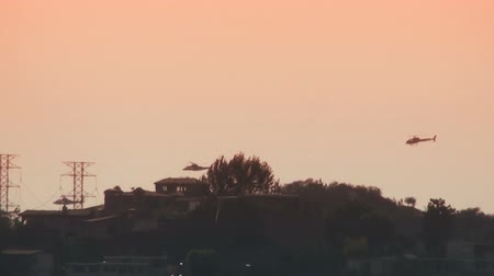 Tracking shot of 4 helicopters flying over the Hollywood Hills Stock Footage