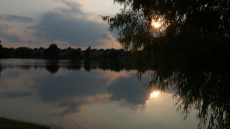 wavelets : Sunset seeping through the leaves of a tree and reflected in the waters of a pond Stock Footage