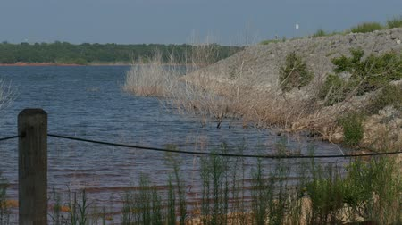oklahoma : Small waves rolling in to the bank of a lake fenced off by a wire and tall green bushes Stock Footage