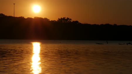Full round sun setting with golden reflections in the flowing water of a lake Wideo