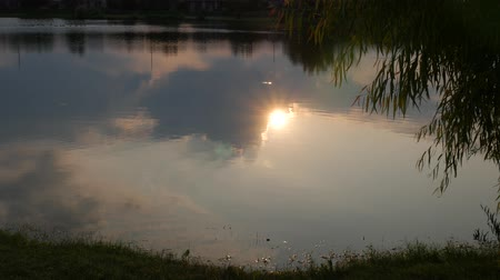 wavelets : The sunset reflected in the waters of a pond at dusk Stock Footage