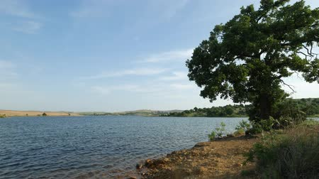 oklahoma : Steady shot of a scenic lake with a tree on the bank
