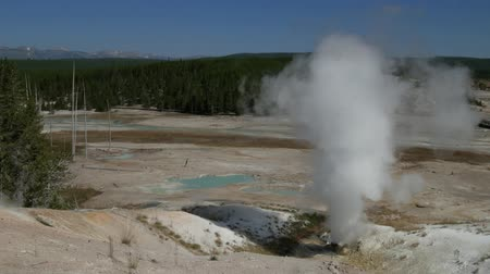 geiser : Steady shot of the Black Growler spewing steam at Yellowstone National Park, Wyoming. Stockvideo