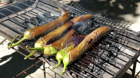 bakłażan : Handheld, side view shot of eggplants grilling over hot coals outdoors Wideo