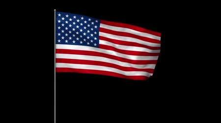 fosco : Waving american flag with alpha matte Stock Footage