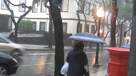 andar : Rainy day in the city - cars going down the hill,commuters passing holding umbrellas Vídeos