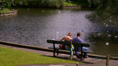 bank : A couple sitting in the park on the bench by the pond with water birds