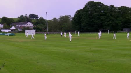 match : Long shot of a cricket game Stock Footage