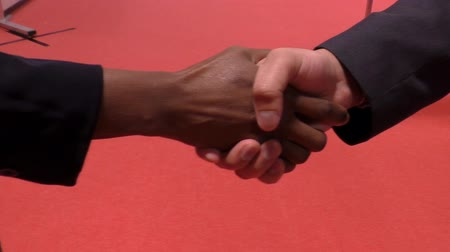 agreement : African businesswoman, woman and caucasian businessman, man handshake against red background Stock Footage