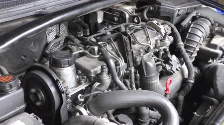 silnik : View of car engine compartment with motor running, timing belt looping Wideo