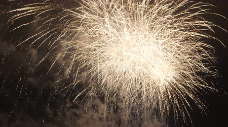 ohňostroj : End of fireworks display, the finale. Last firework bursts in slow motion
