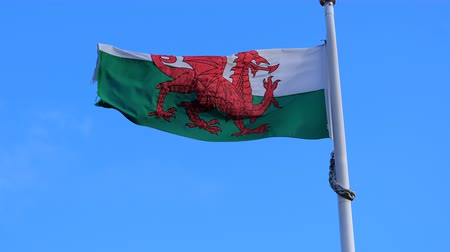 egyesült : National flag of Wales, UK, United Kingdom flying against blue sky on the flagpole Stock mozgókép