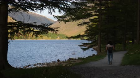 szczupak : Rear view of woman walking lakeside trail with beautiful Buttermere lake and Fleetwith Pike mount view through conifer tree branches