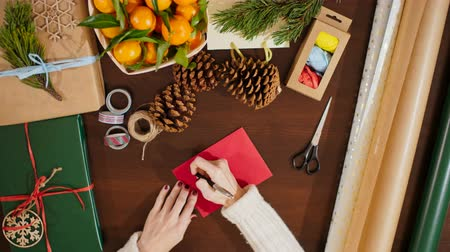 giveaway : 4K View from Above of Female Hands Putting the Postcard in an Envelope and Writing Christmas Greetings on It Stock Footage