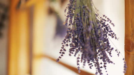 kurutma : Two Beautiful Dried Bouquets of Lavender Flowers in the Rural Wooden House Stok Video