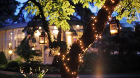 fa háttér : Wonderful B-roll or Background Video of a Decorated Tree with Garland and Lanterns in Night in the Garden of a Luxury Restaurant