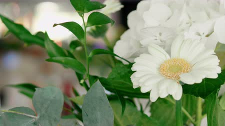 hortensia : Bouquet of White Gerbera and Hydrangea with Green Leaves as Decoration of Wedding Table Setting. 4K b-roll shot Stock Footage