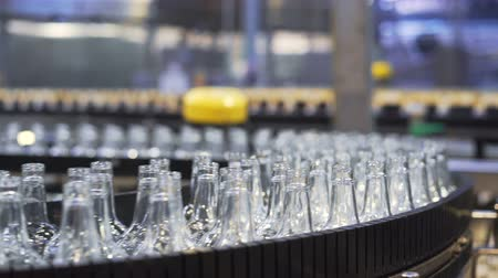 enchimento : Spill in glass bottles at the plant. Conveyor belt with glass bottles. The production process of alcoholic beverages. close-up Vídeos