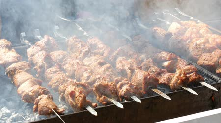 grelha : 4k Skewers of beef roasts on the grill at picnic Vídeos