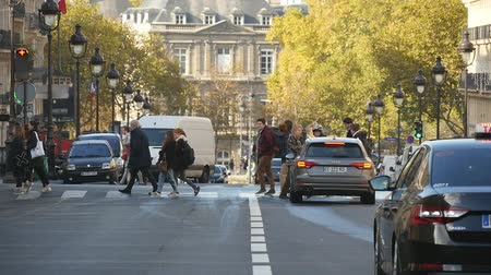 parisli : Paris, France - November 6, 2017:An impressive view of relaxed pedestrians crossing the picturesque street in Paris in autumn. Several cars are waiting for them. Stok Video