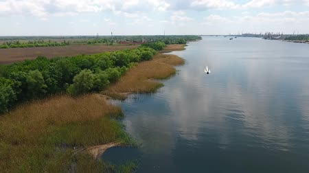 моторная лодка : A stunning bird`s eye view of the Dnipro bank covered with lushy grass and wetland and a small motorboat floating towards the drone in summer