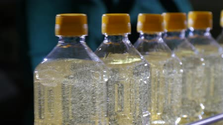 literário : Marvelous closeup one liter plastic bottles with see-through sunflower oil running in a conveyer line in oil producing plant.