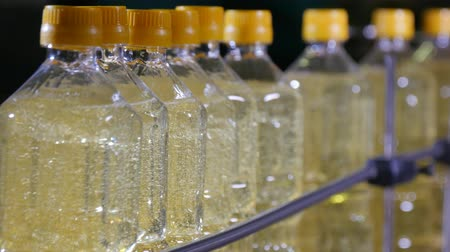 literário : Wonderful view of high one liter plastic bottles with amber looking sunflower oil going in a modern conveyer line in oil producing plant. Stock Footage