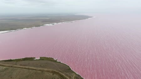 ormanda yaşayan : Beautiful bird`s eye view of the Siwash lake with pink waters and white spumy lines covering it in Kherson region in summer. The sky is sparkling blue