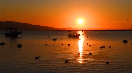 turecko : Fishing boat on the sea at sunset in Izmir - Turkey. Pelicans and seagulls flying and swimming on the sea, silhouette.