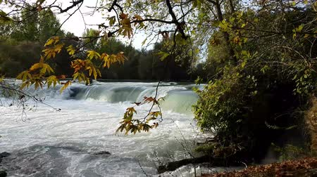 Manavgat waterfall in Antalya - Turkey. Stock photography Autumnal ornament, red leaves of maple. Stock Footage