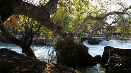 naturale : Waterfall flowing among trees. Manavgat waterfall in Turkey. Stock Footage