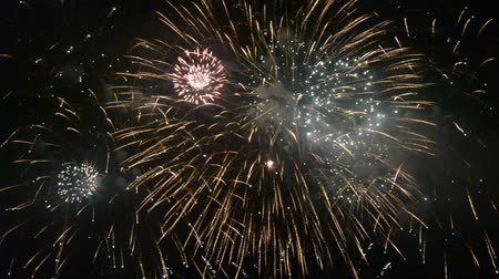 estrelado : Colorful fireworks in the dark of night Stock Footage