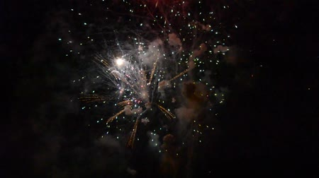 pirotecnia : Colorful fireworks in the dark of night Vídeos