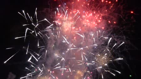 explodindo : Colorful fireworks in the dark of night Stock Footage
