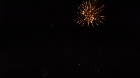 Colorful fireworks in the dark of night Stock Footage