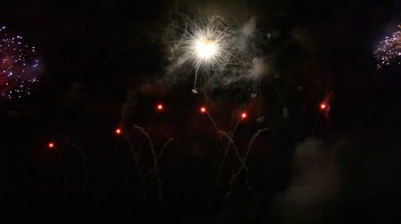 which : Colorful fireworks in the dark of night Stock Footage