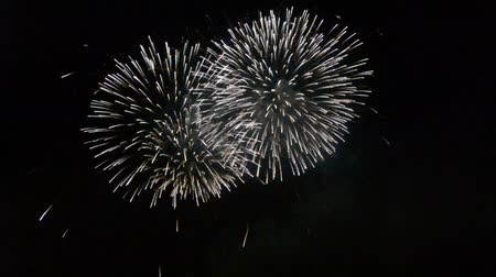 çok : Beautiful fireworks that light up and color the dark night sky. video