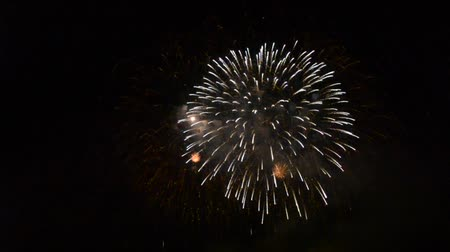 pirotecnia : Beautiful fireworks that light up and color the dark night sky. video