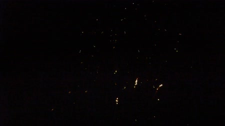 Beautiful fireworks that light up and color the dark night sky. video
