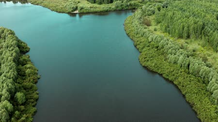 Aerial scenery of forest lake from a drone flying forward