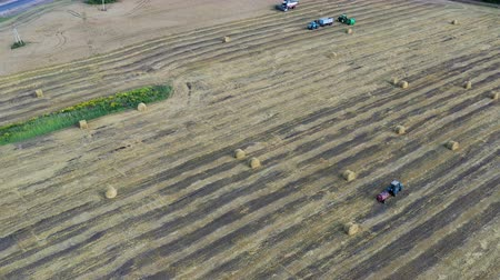 Aerial view of modern combine harvesting wheat on the field.